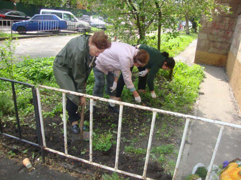 Працюємо разом: літні львів`янки висадили квітник біля бібліотеки